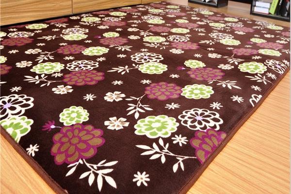 carpet 200*300cm