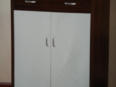 shoe cabinet 206#